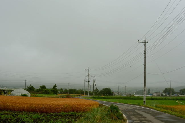 D70_2958.jpg