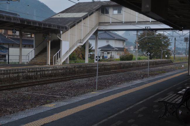 D70_4956.jpg
