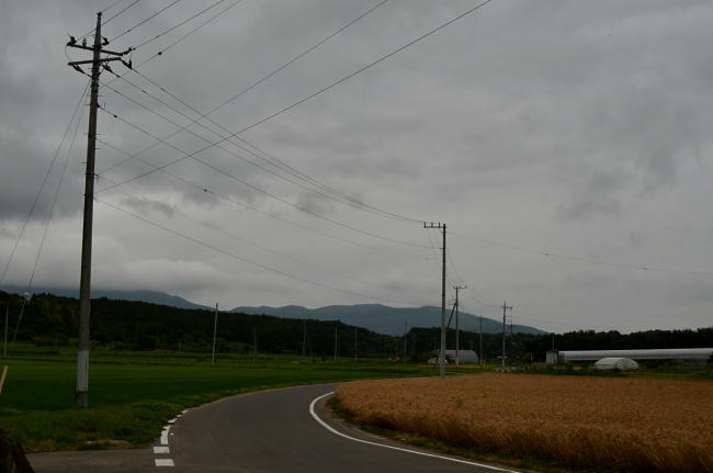 D70_5042.jpg