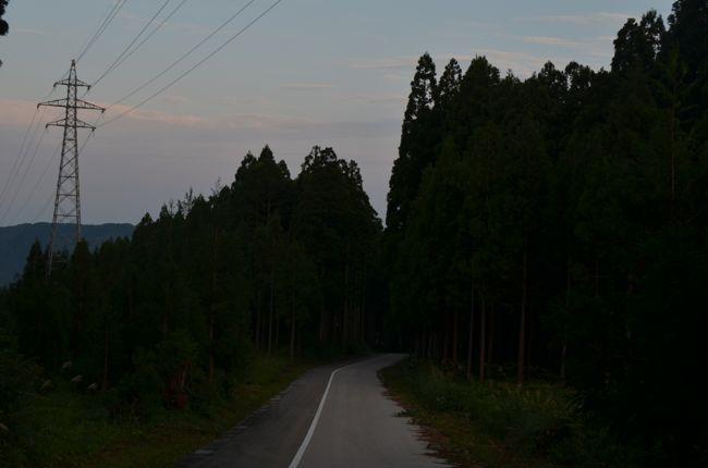 D70_8034.jpg