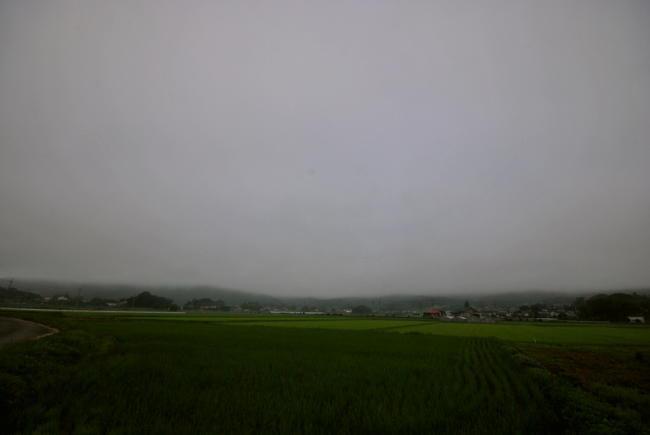 DSC_5810.jpg
