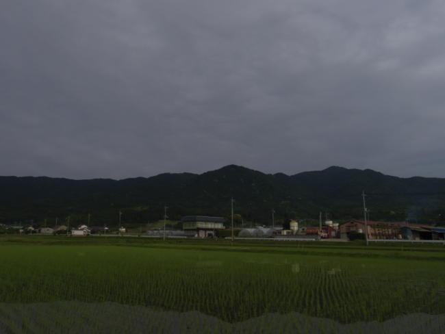 IMGP0699.jpg