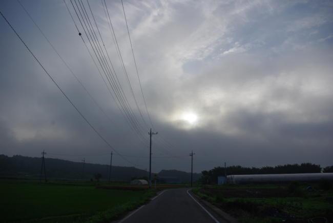 IMGP2201.jpg