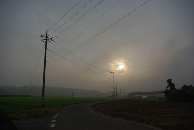 IMGP3233.jpg